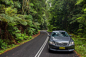 Australia_234_Blue_Mountains_National_Park.jpg, 26kB