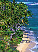haw164_Oahu_Diamond_Head_Beach.jpg, 27kB