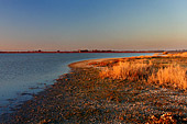 Austria, Neusiedler See, National Park, Lange Lacke, Photo Nr.:neusiedl030