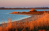 Austria, Neusiedler See, National Park, Lange Lacke, Photo Nr.:neusiedl031