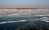 Austria, Neusiedler See im Winter, Photo Nr.:neusiedl035