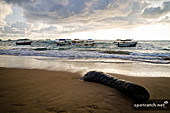 07ah_sri_lanka_fisherboats_beach.jpg, 14kB