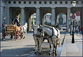 Vienna, Pferdekutsche (Horse-drawn Carriage), Photo Nr.: W2326
