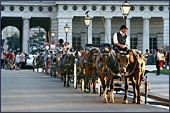 Vienna, Pferdekutsche (Horse-drawn Carriage) at Square Heldenplatz, the Hofburg, Photo Nr.: W2332