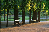Vienna, Schoenbrunn, Photo Nr.: W3284