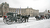 Vienna, Hofburg, Photo Nr.: W5436
