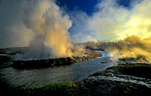 Yellowstone National Park, Black Sand Basin, Photo Nr.: y005