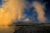 Yellowstone National Park, Grand Prismatic Spring, Photo Nr.: y008