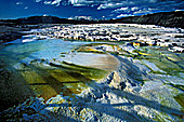 Yellowstone National Park, Mammoth Hot Spring, Photo Nr.: y149