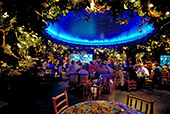 Chicago, Rainforest Cafe (Restaurant), Photo Nr.: chic015