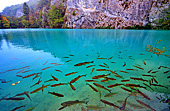 Croatia, Plitvicer Lakes, Photo Nr.: croatia663