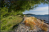 Croatia, Island Krapanj, Photo Nr.: croatia1018