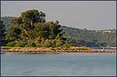 Croatia, Island Krapanj, Photo Nr.: croatia1021