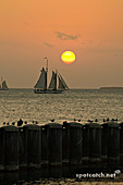 10aj_key_west_sonnenuntergang4.jpg, 11kB