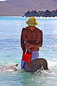 Tahiti260 - Rangiroa urlaub ...