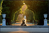 Vienna, Schoenbrunn, Photo Nr.: W3281