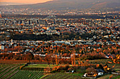 Vienna, View from Leopoldsberg, Photo Nr.: W5238