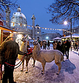 Vienna, Karlskirche im Winter, Adventmarkt Christkindlmarkt, Photo Nr.: W5324