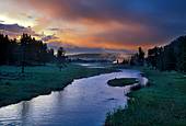 Yellowstone National Park, Nez Perce Creek, Photo Nr.: y011
