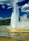 Yellowstone National Park, Photo Nr.: y021