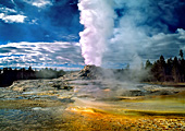 Yellowstone National Park, Castle Geyser, Photo Nr.: y024