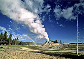 Yellowstone National Park, Castle Geyser, Photo Nr.: y049