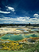 Yellowstone National Park, West Thumb Basin, Yellowstone Lake, Photo Nr.: y068