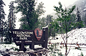 Yellowstone National Park, Photo Nr.: y087