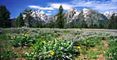 Grand Teton National Park, Photo Nr.: y109