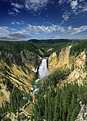 Yellowstone National Park, Photo Nr.: y134