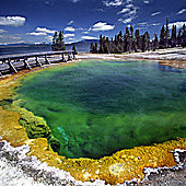 Yellowstone National Park, West Thumb Basin, Yellowstone Lake, Photo Nr.: y137