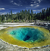 Yellowstone National Park, Morning Glory Pool, Photo Nr.: y139