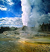 Yellowstone National Park, Castle Geyser, Photo Nr.: y151